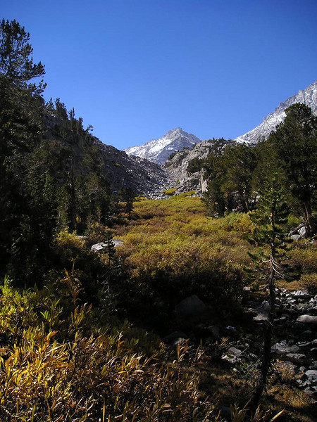 Clear Sierra skies