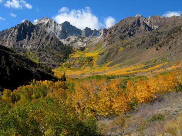 McGee Creek Colors