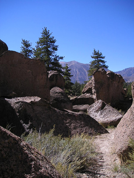 View toward the Sierra from the Dreamers