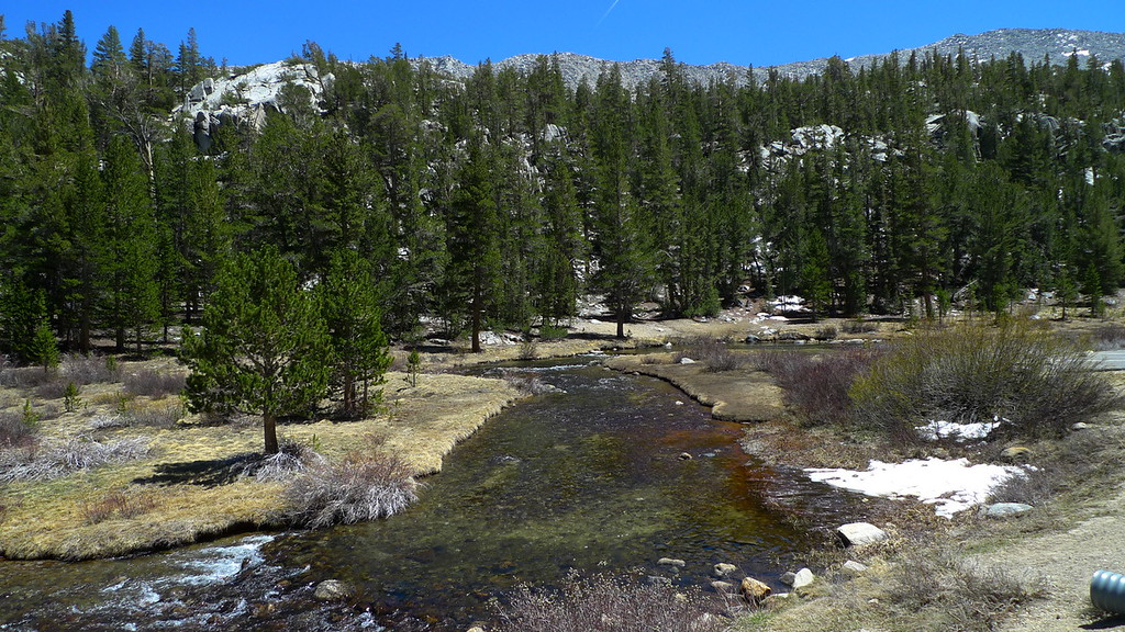Rock Creek at the Mosquito Flat Trailhead. Fished here for  a short time.