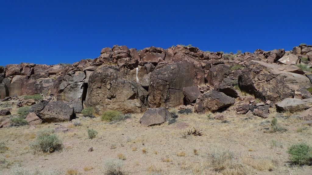 Petroglyph area
