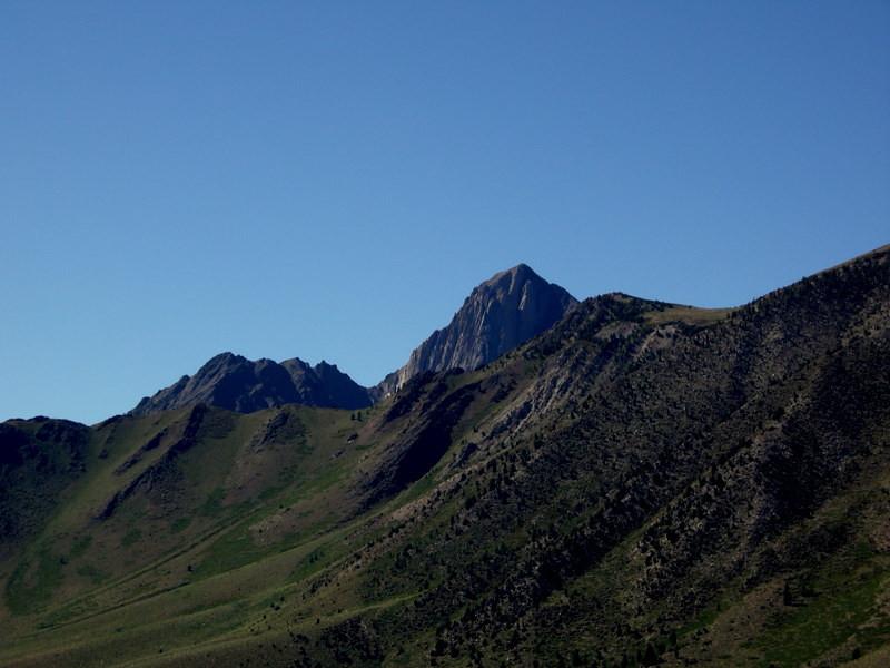 Mt Morrisson