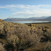Mono Lake from Black crater