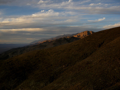 Evening on White Mountain