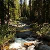 A 'quiet creek' at Crabtree trailhead