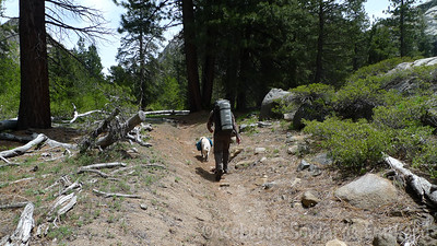 Heading down the trail with my boys.