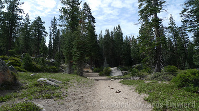 Heading out from the Crabtree trailhead in Emigrant Wilderness.