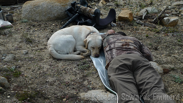 And there is nothing like a quick afternoon nap in camp!