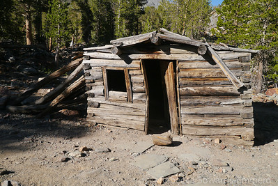 For Sale: Log Cabin in the beautiful Sierra! Cozy historic home with a view that can't be beat! May require a little TLC but it's move in ready! Only $499,000.