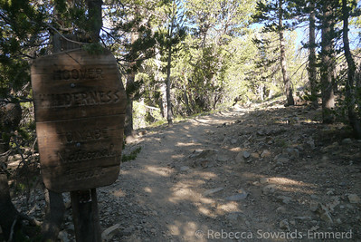 I started off from the trailhead at the end of the road into Virginia Lakes. I've never hiked this trail before so it's all new to me!