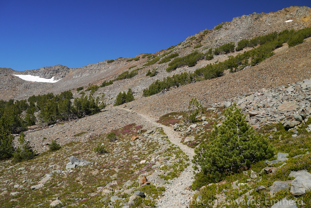 Eventually the trail climbs a few hundred feet to an unnamed pass around 11,200 ft.