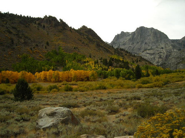 June Lake Loop<br /> <br /> Next we decided to check out a few other sites for color. The June Lake loop was nice.