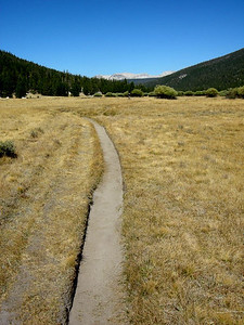 Trail through Lyell Canyon
