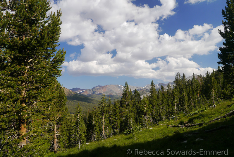 The trail to Gaylor Lakes/Peak climbs somewhat steeply from Tioga Pass. It isn't long until you get some nice views.