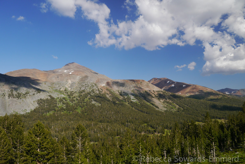 Looking across the valley to Mt Dana and Mt Gibbs.