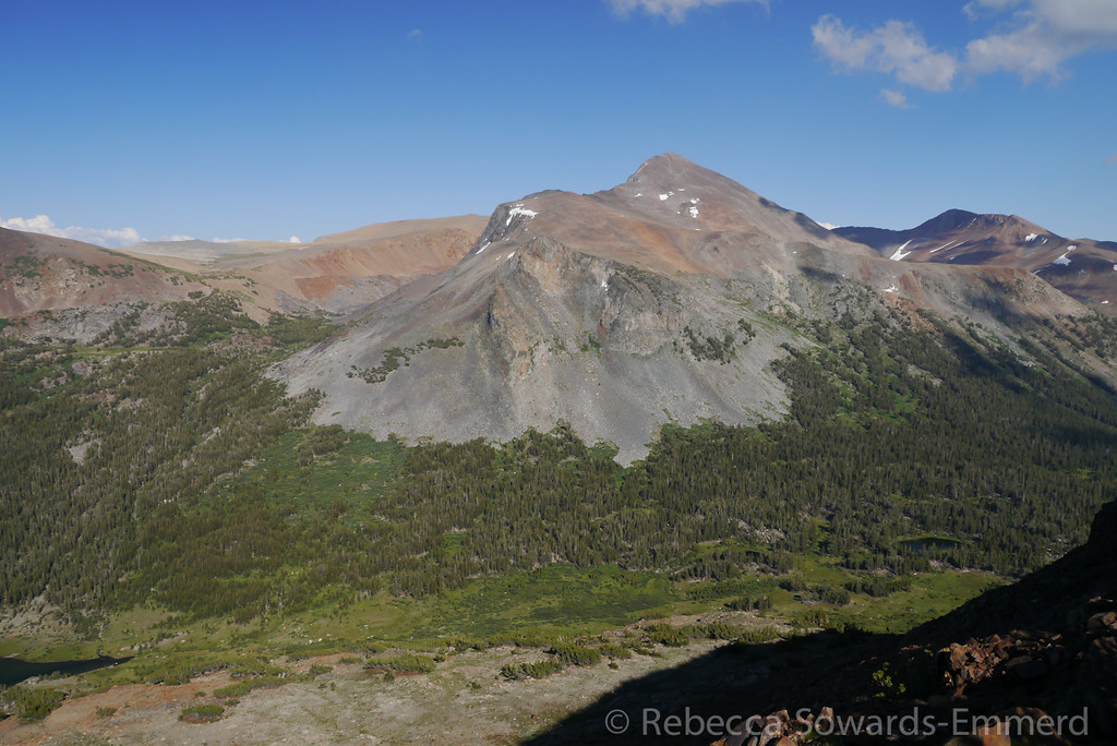Mt Dana.