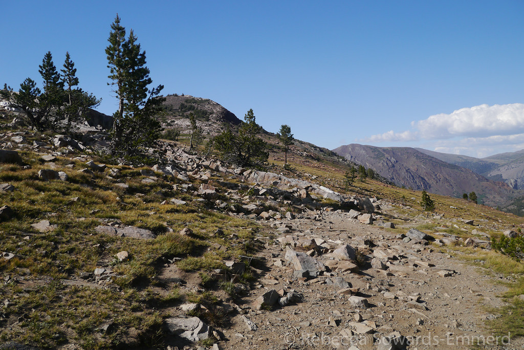 After a short climb you reach the open pass/plateau below Gaylor Peak.