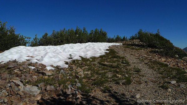 Teeny bit of snow still up here. And a use trail along the ridge.