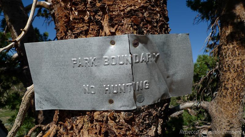 The Yosemite park boundary actually runs along the ridgeline.