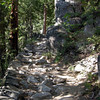 The trail as it climbs out of the canyon<br /> <br /> I was really sick of those cobblestones by the end of the hike