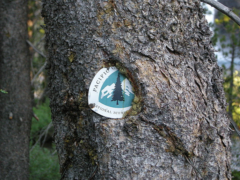 PCT marker in the middle of the Glen Aulin High Sierra camp