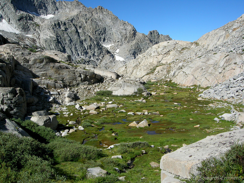 Meadows below Kaweah Gap (Precipice Lake is just below and our of sight in the middle of this photo).