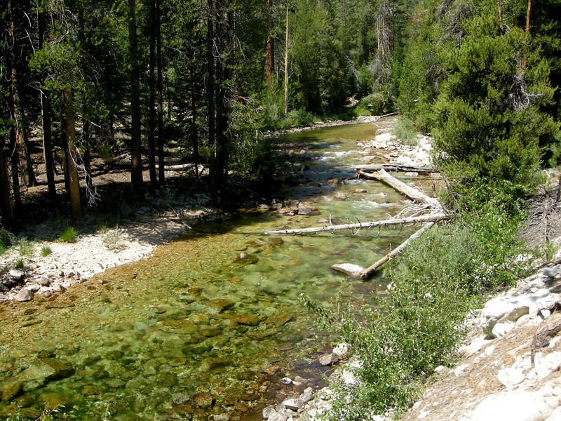 Kern River (full of fishies - best fishing ever!)