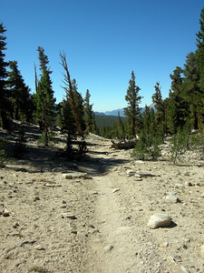 Out of the Moraine, heading down towards Sandy Meadow