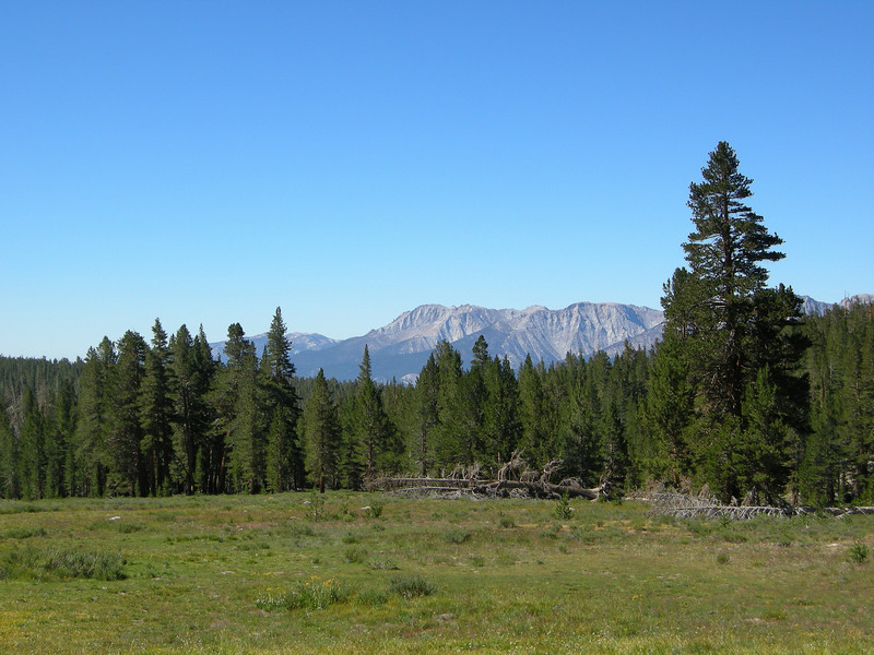 Sandy Meadow and view towards Mineral King