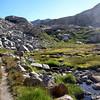 Fragile meadows below Kaweah Gap