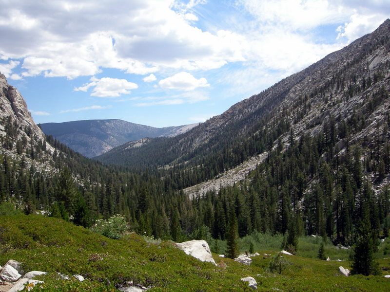 Looking back down rattlesnake creek towards the Kern.
