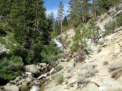 Hiking up rattlesnake creek