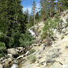 Hiking up rattlesnake creek