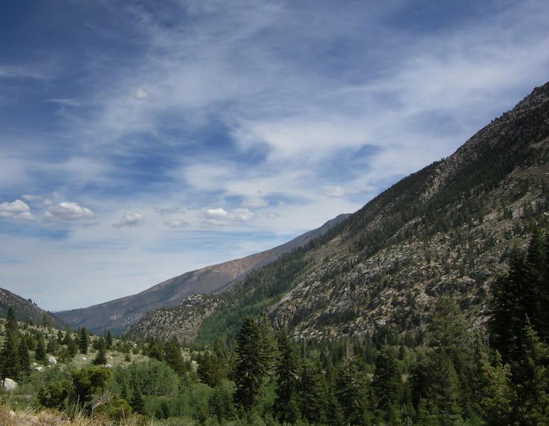Looking back down Robinson Creek Canyon towards the trailhead