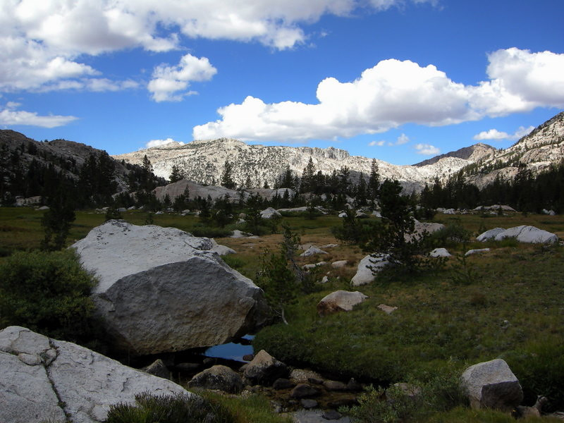 Meadow below Burro Pass