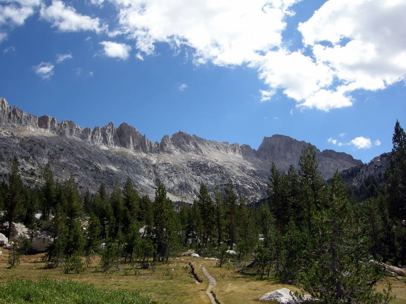 Trail through a meadow below Burro Pass