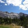 Trail through a meadow below Burro Pass