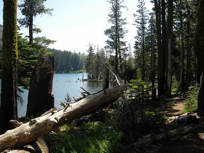 The short hike to camp goes by Feely lake, which sits in between Carr and Island Lakes