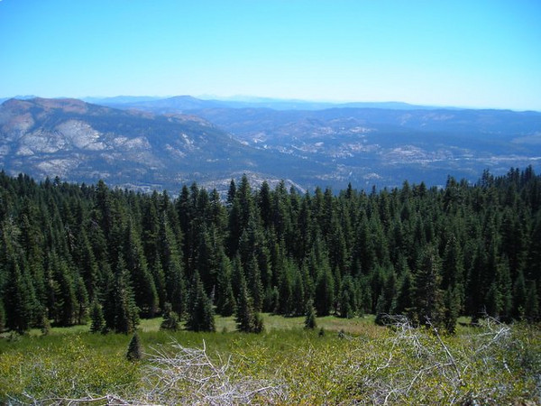 View of HWY 80 from Grouse Ridge