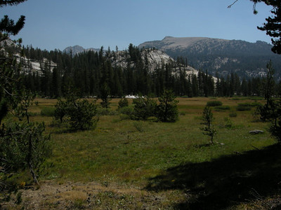 Unnamed meadow above Mono Creek North Fork