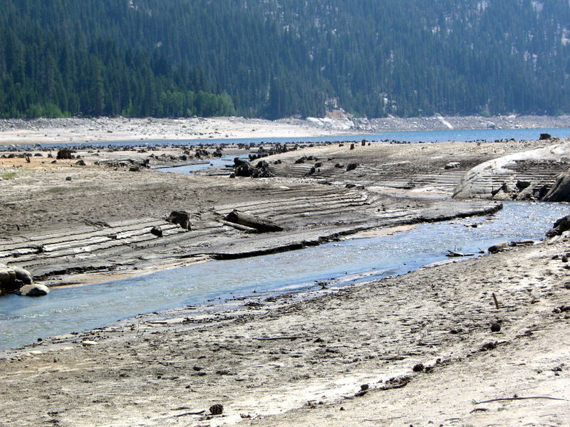 The dry lakebed<br /> <br /> All the tree stumps are exposed