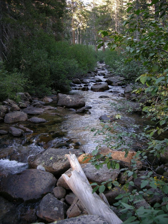Evening on fish creek