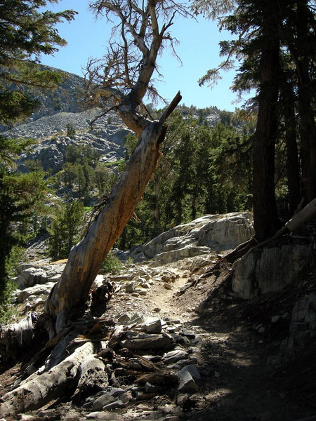 Trail out of Duck Creek