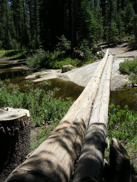 A very typical JMT 'bridge' - a log or two with the upper sides carved flat.