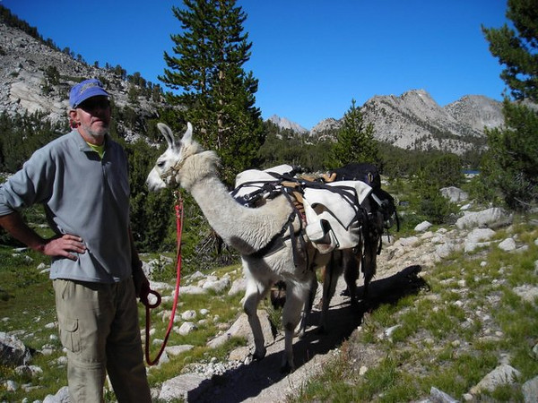 We met a llama packer on the trail<br /> <br /> I want a Rent-a-Llama to carry my stuff next time!