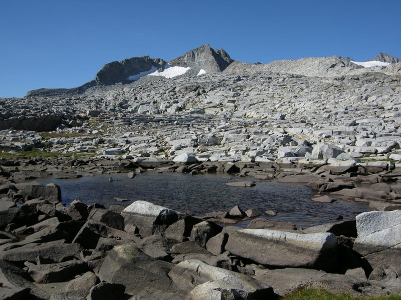 Tarn at Donohue Pass<br /> <br /> Drying out, but there was still water available