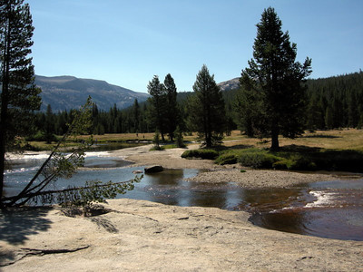 One of my favorite spots along the Lyell Fork of the Tuolumne River  The water is lower than usual this year, but it still looks as refreshing as always!