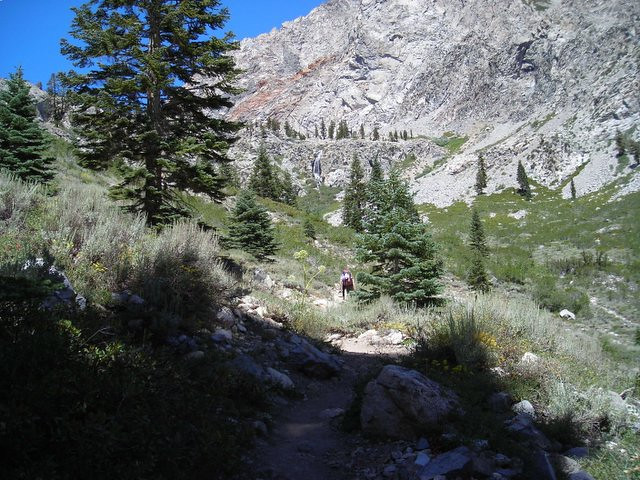 Looking back at the trail toward Golden Trout Lake