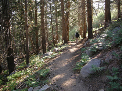 Dave heads down into Vidette Meadow