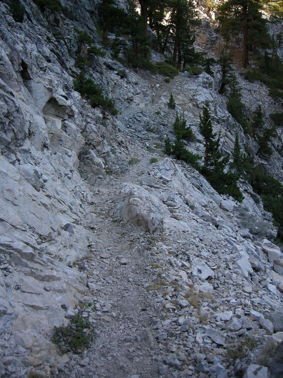 But I still tried. Here is one steep stretch of trail.<br /> <br /> With 3000+ feet to climb today, I was hoping it wouldn't all be like this